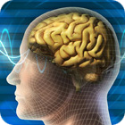 kuantum ve psikiyatri