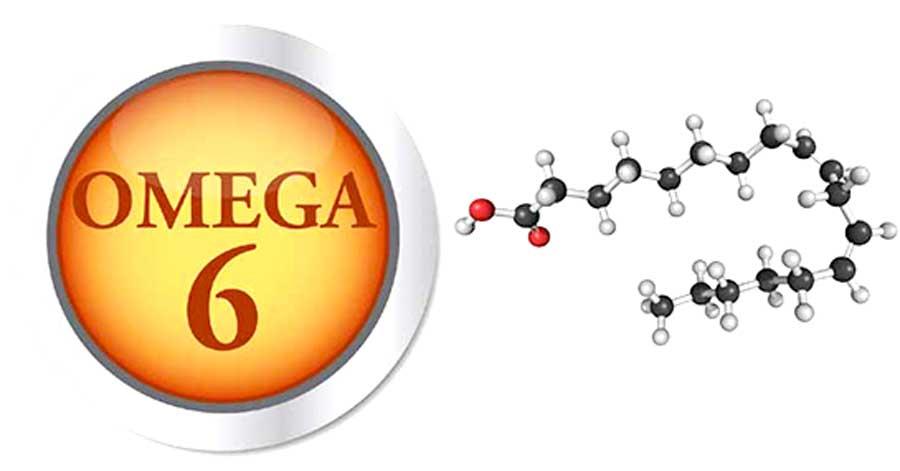 https://www.aligok.com.tr/wp-content/uploads/2019/05/omega6.jpg